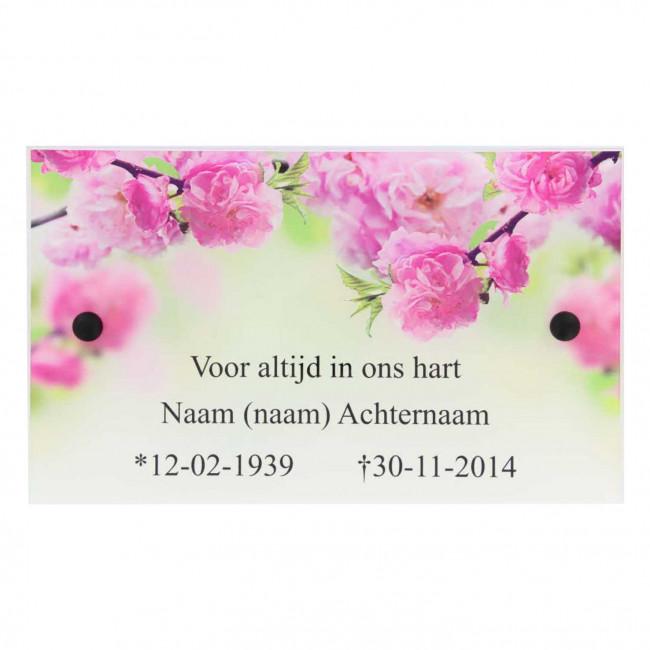 Muurtegengeweldnl Gedenkplaat Plexiglas 250 X 150